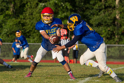 Wilcox Tech's Jacob Conte hands off to Steven Ortiz Wednesday during a scrimmage at Haddam Killingworth in Higganum Aug. 24, 2016 | Justin Weekes / For the Record-Journal
