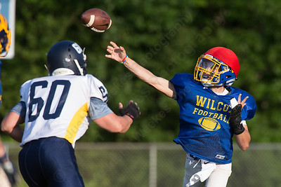 Wilcox Tech's Jacob Conte drops back to pass Wednesday during a scrimmage at Haddam Killingworth in Higganum Aug. 24, 2016 | Justin Weekes / For the Record-Journal