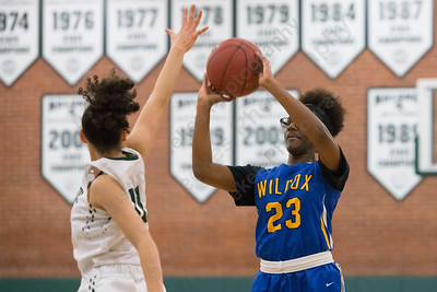 Wilcox Tech's Kayla Ransom gets a shot off Monday at Maloney High School in Meriden January 29, 2018 | Justin Weekes / Special to the Record-Journal