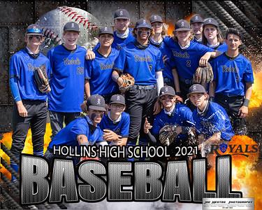 Hollins Team