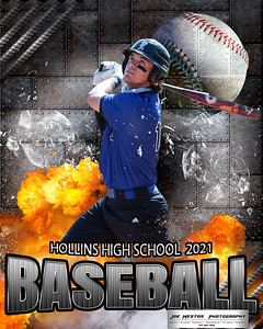 hollins batter