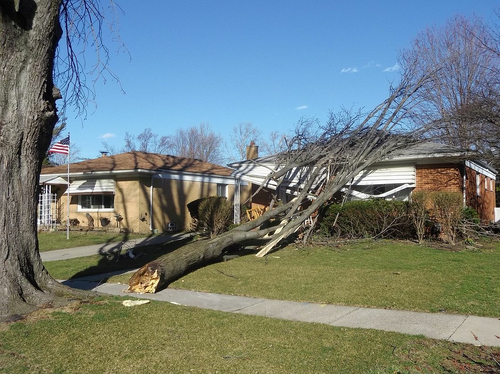 . An uprooted tree rests on a house on Harding near Colgate in Dearborn Heights as a result of Wednesday\'s high winds that whipped through the area. Photo submitted by Jim Jacek.