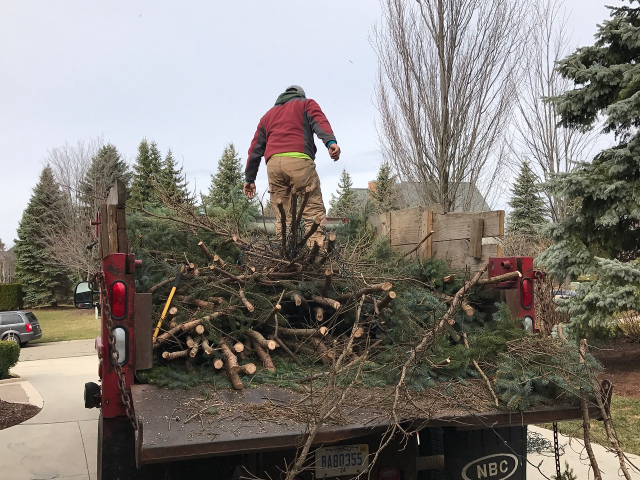 Work began quickly in many areas to clean up the mess and remove fallen trees.  A crew from Greener Grounds Outdoor Solutions works to remove fallen evergreen trees in Oakland County. Photo by Stephen Frye / Digital First Media.