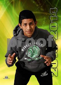 Murray County High School Wrestling 2013-2014