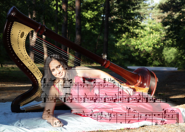 47250581-Mussorgsky-Pictures-at-an-Exhibition-Harp-Wz000696-1
