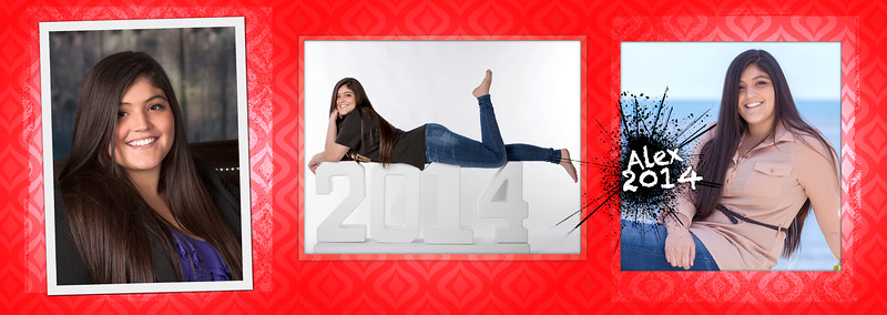 Senior Graduation Party Invitation Examples