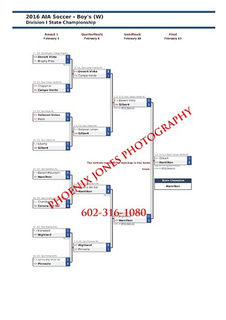 2016-aia-division-i-soccer-boys-w-state-championships