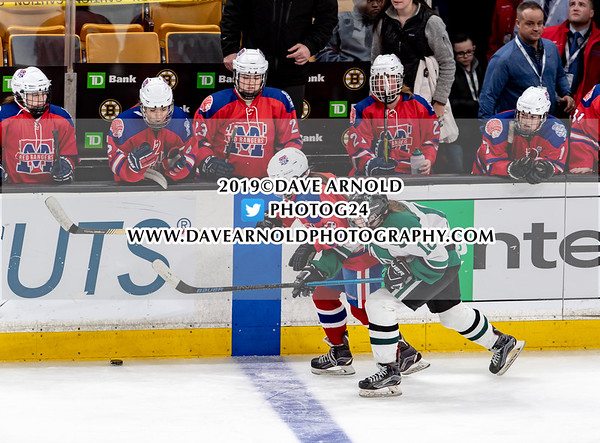 MIAA Girls Division 1 State Championship: Methuen-Tewksbury defeated Austin Prep 2-1, in overtime, on March 17, 2019 at TD Garden in Boston, Massachusetts.