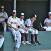 Arizona players watch the game during the Texas Vs Arizona Heartland Classic game on Tuesday. Julie Bragg/ The Transcript