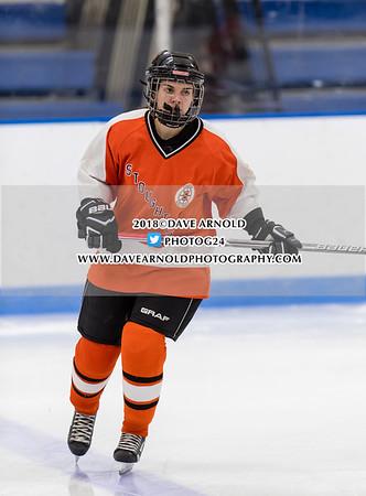 Girls Varsity Hockey: Dedham defeated Stoughton 8-0 on January 27, 2018, at Noble & Greenough in Dedham, Massachusetts.