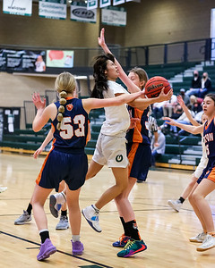 Salt Lake City, UT - Friday January 15, 2021: Girls SOPH Basketball. Brighton at Olympus at Olympus High School. ©2021 Bryan Byerly