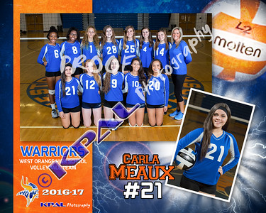 Carla D  Meaux-Team Collage