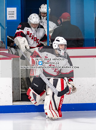 MIAA D2 North Quarterfinal: Danvers   defeated Marblehead 3-0 on February 28, 2019 at O'Brien Arena in Woburn, Massachusetts.