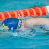 Needham Girls Varsity Swimming & Diving verses Newton North on October 31, 2012, at Newton North High School in Newton, Massachusetts.