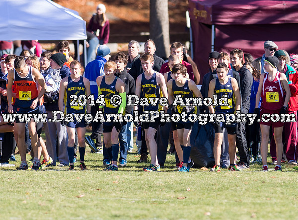 Needham Boys Varsity Cross Country placed 13th at the Massachusetts Division 1 State Championships, on November 15, 2014, at Franklin Park in Boston, Massachusetts.
