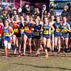 Needham Girls Varsity Cross Country won the Massachusetts Division 1 State Championship, on November  15, 2014, at Franklin Park in Boston, Massachusetts.