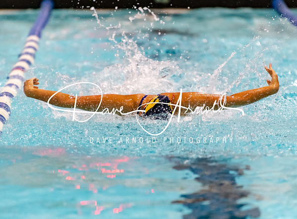 Girls Varsity Swimming & Diving: Needham defeated Brookline 101-85 on October 23, 2018 at Brookline High School in Brookline, Massachusetts.