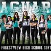 Forestview softball 4 x 8