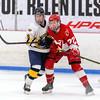 Boys Varsity Hockey: Waltham defeated Andover 1-0 on January 18, 2019 at the Breakaway Ice Center in Tewksbury, Massachusetts.