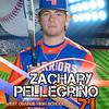 Zach Pellegrino-Poster