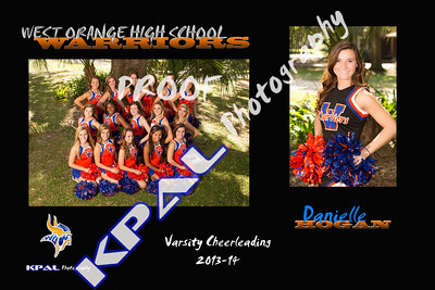 Danielle Hogan Team Collage