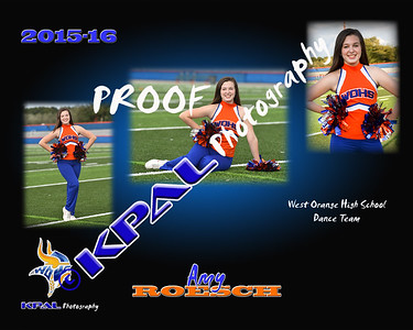 Amy Roesch Collage