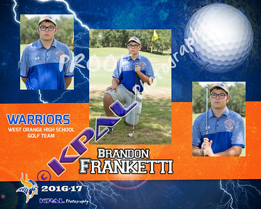 Brandon Franketti-Collage