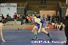 FAWA JV Championships 2013-14