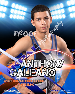 Anthony Galeano-Poster copy