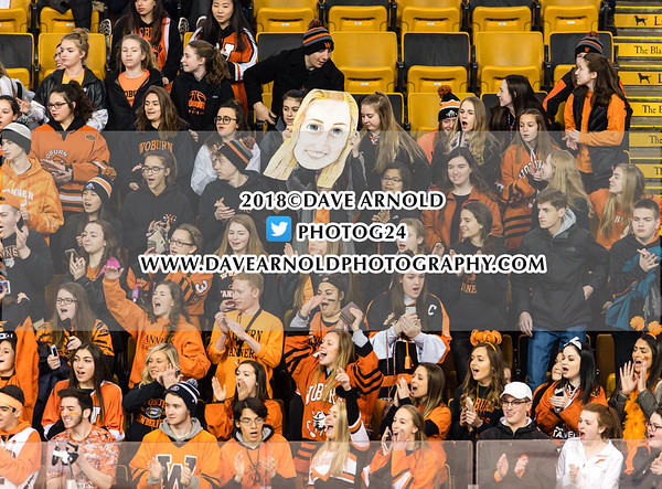 MIAA Girls D1 Final: Woburn defeated Tewksbury/Metheun 1-0 on March 18, 2018 at the TD Garden in Boston, Massachusetts.