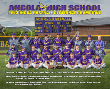 AHS Baseball-Poster 16 x 20