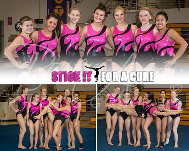 AHS gymnastics Cure Poster-0004-2
