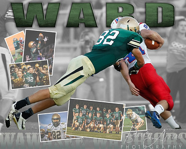 Brett Ward Collage 2013