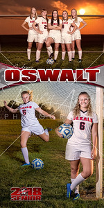 Audrey Oswalt Soccer Banner