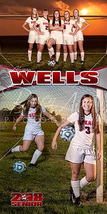 Alyssa Wells Soccer Banner
