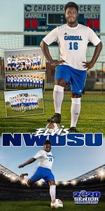 Banner Elvis Nwosu