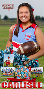 Cheer Abby Carlisle Banner