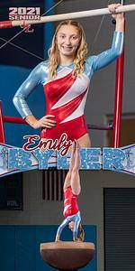 Gymnastics Emily Byler Banner
