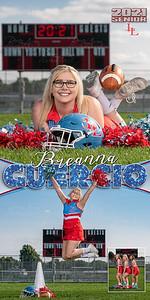 Cheer Breanna Guercio Banner