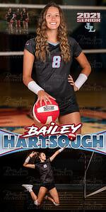 VB Bailey Hartsough Banner