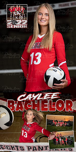 Caylee Bachelor VB Banner 01