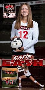 Katie Eash VB Banner 01