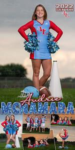 Cheer Audrie McNamara Banner