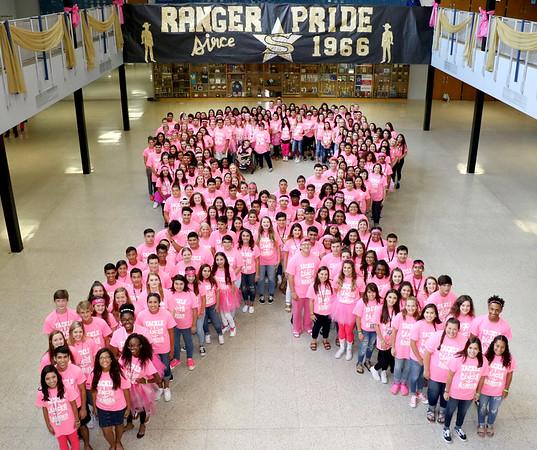 Ranger Pink Ribbon