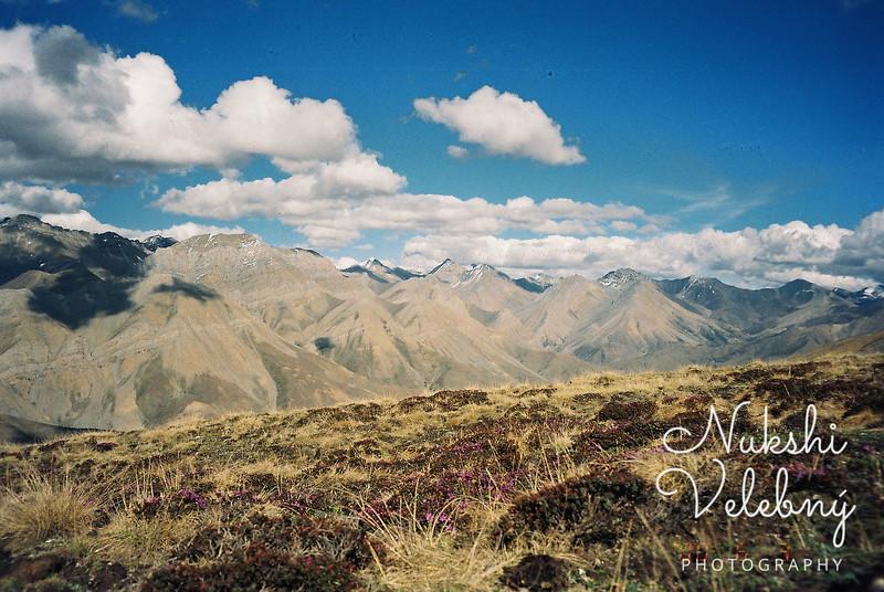 Wild Himalayas