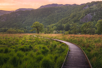 Derwentwater Boardwalk. Lake District, England.