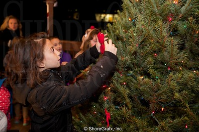 Highlands Tree Lighting 2015