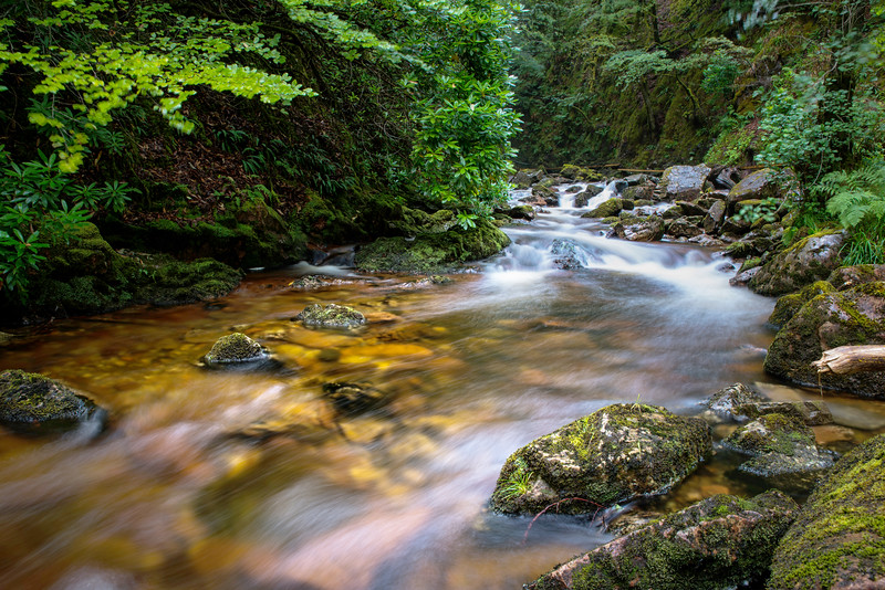 Peaceful Waters down from the Grey Mare's Tail