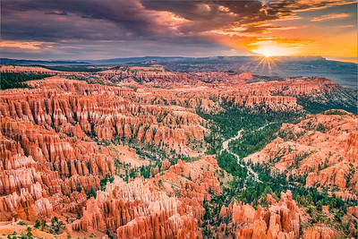 Bryce Morning