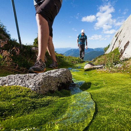 Hiking through a lush alpine meadow